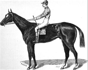 Asreides, winner of the first Kentucky Derby